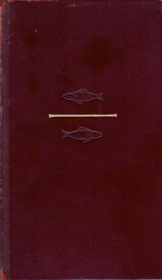 d.v. Angler2